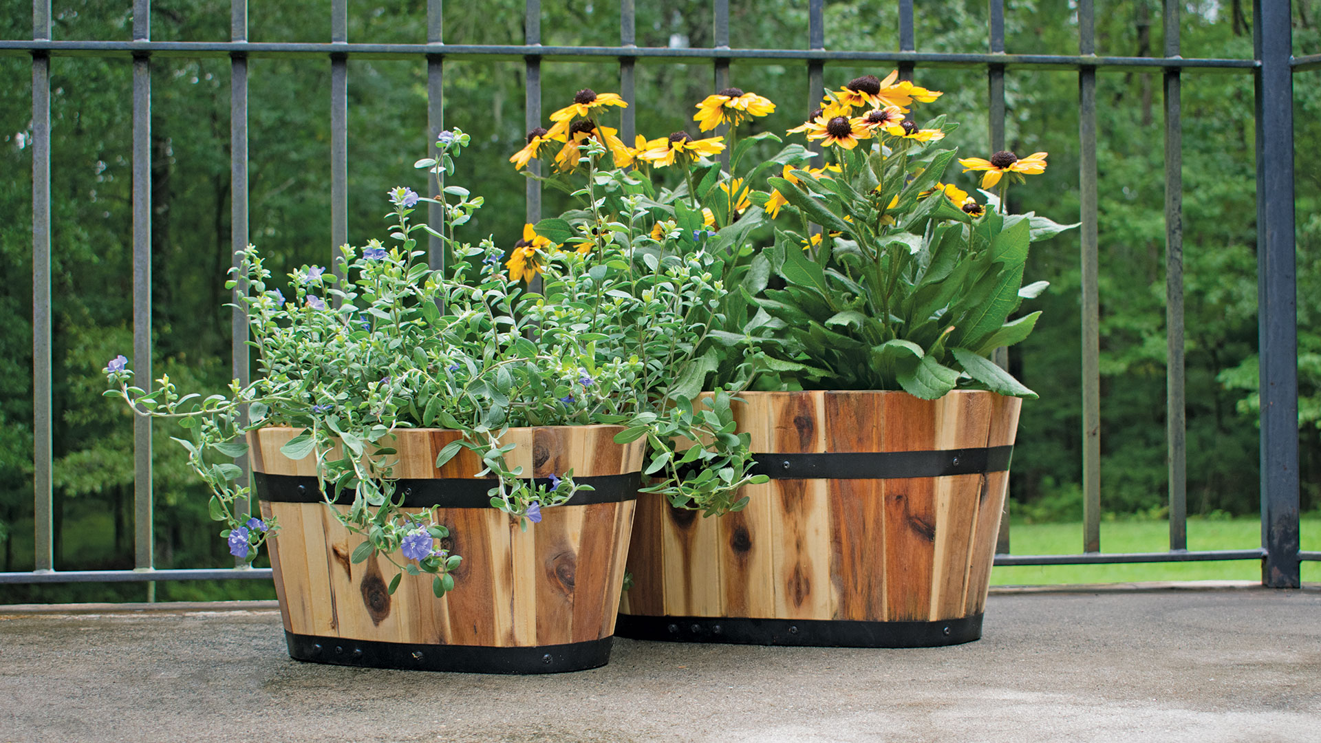 Avera Products Wood Planters